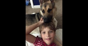 A boy is reunited with his stolen dog.