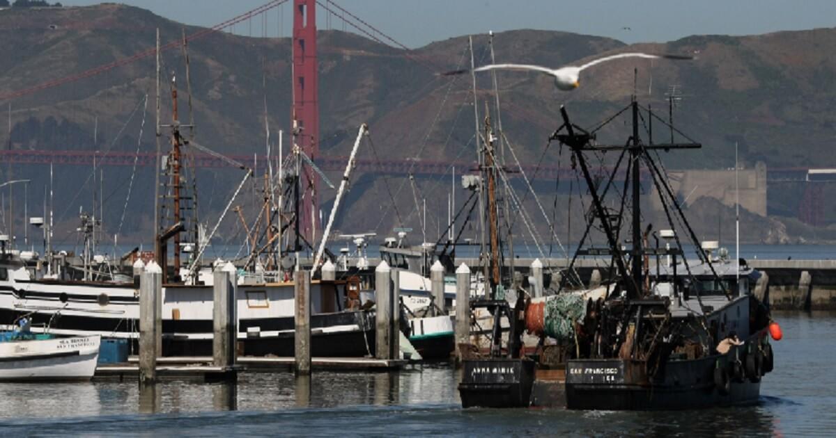 A fishing boat docks in San Francisco in 2008.