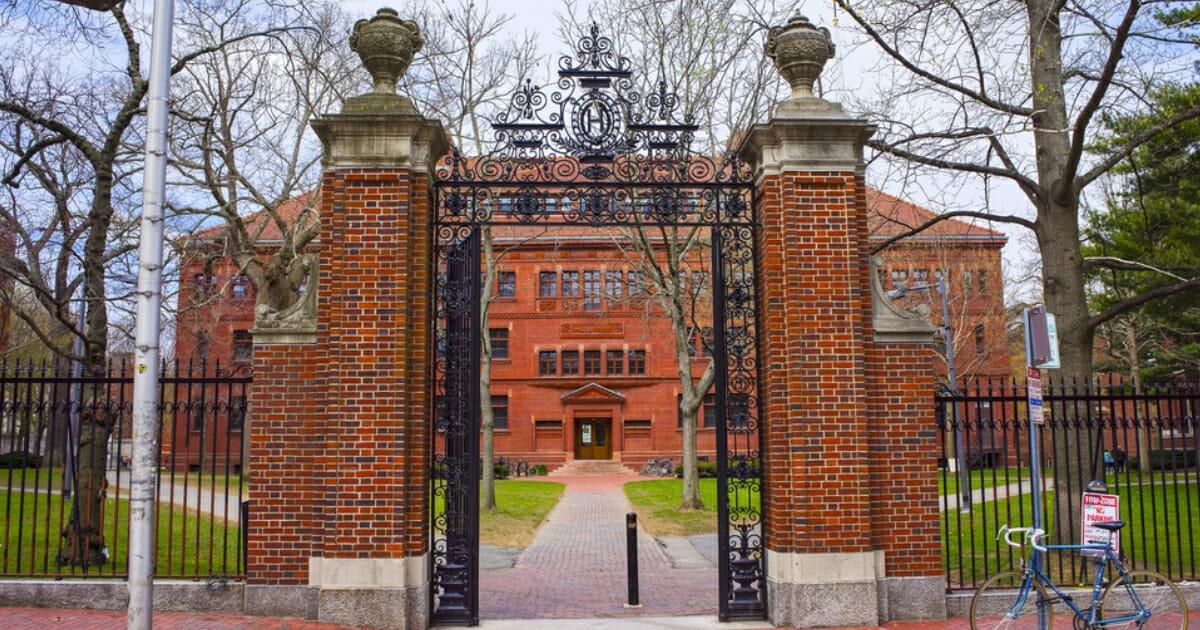 Harvard entrance