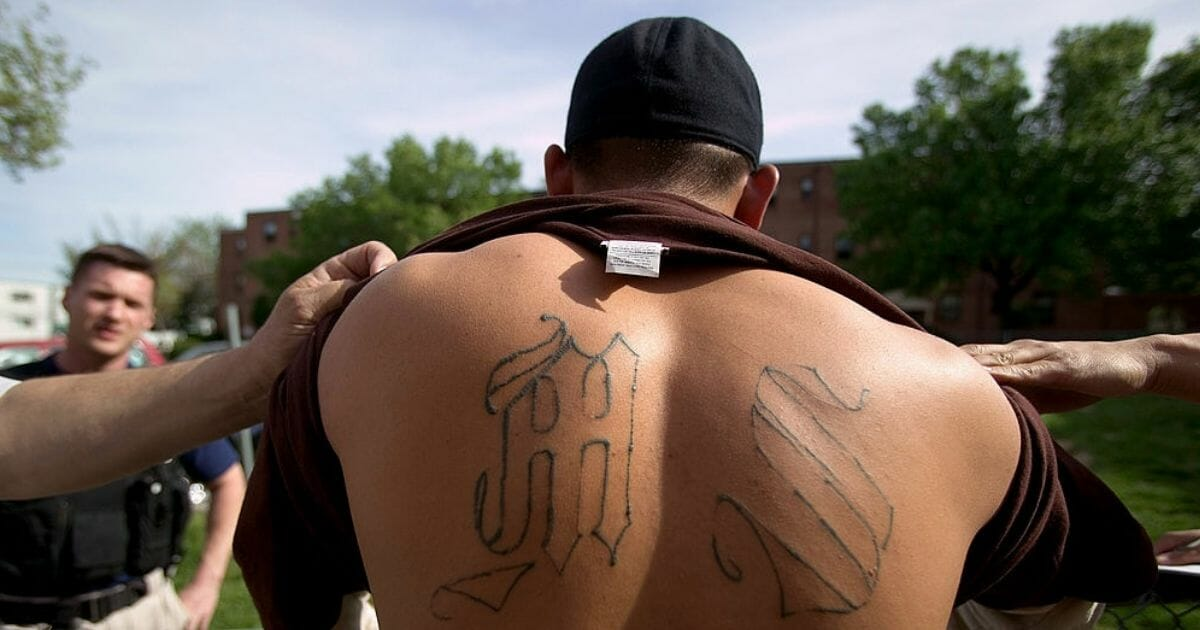 Armed police from Maryland's Prince George's County Anti-Gang Unit detain a confirmed gang member of Mara Salvatrucha 13, or MS-13, in Langley Park, Md.
