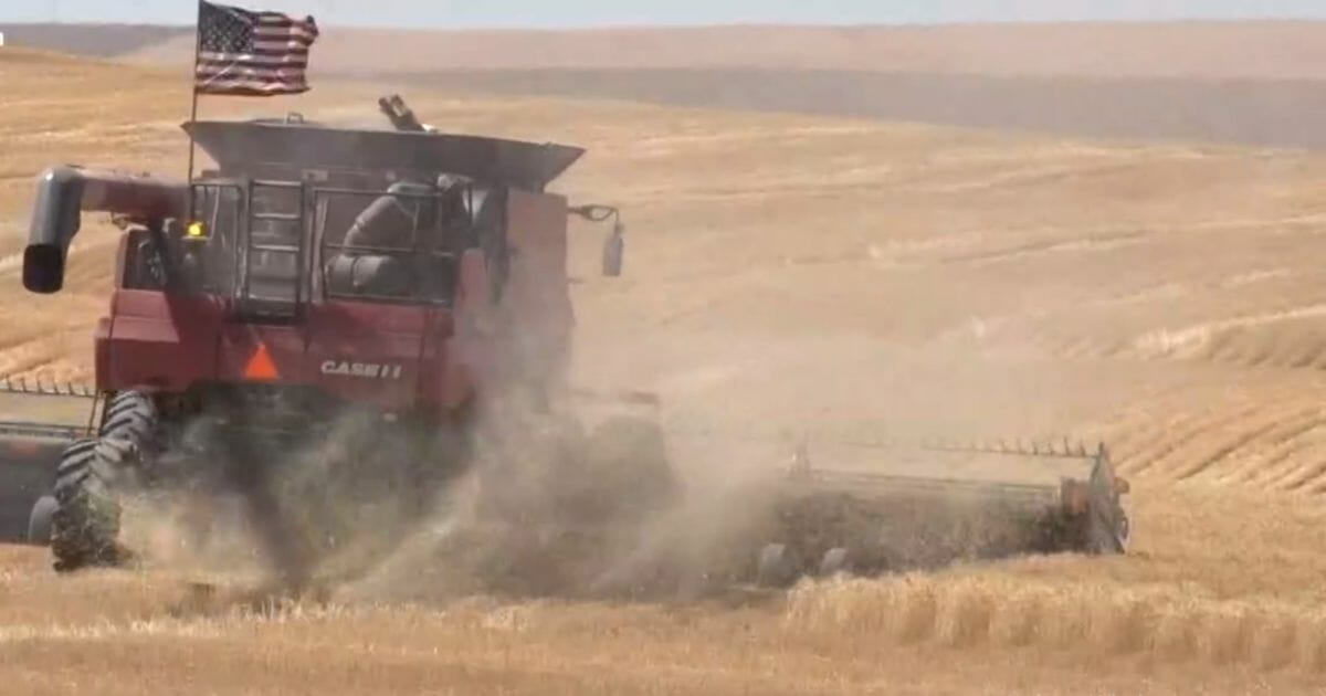 Farmer Hit with Stage 4 Cancer, So Neighbors Grab Their Combines and Get to Work