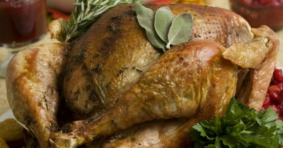 a Thanksgiving turkey in Concord, New Hampshire