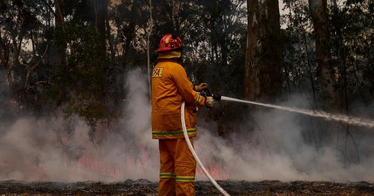 Firefighter NSW