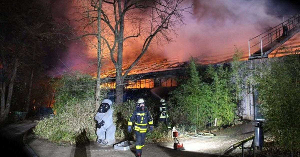 Firefighters battle a blaze at the ape house at the Krefeld Zoo in Germany.