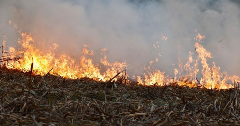 Stock image of a burning field.