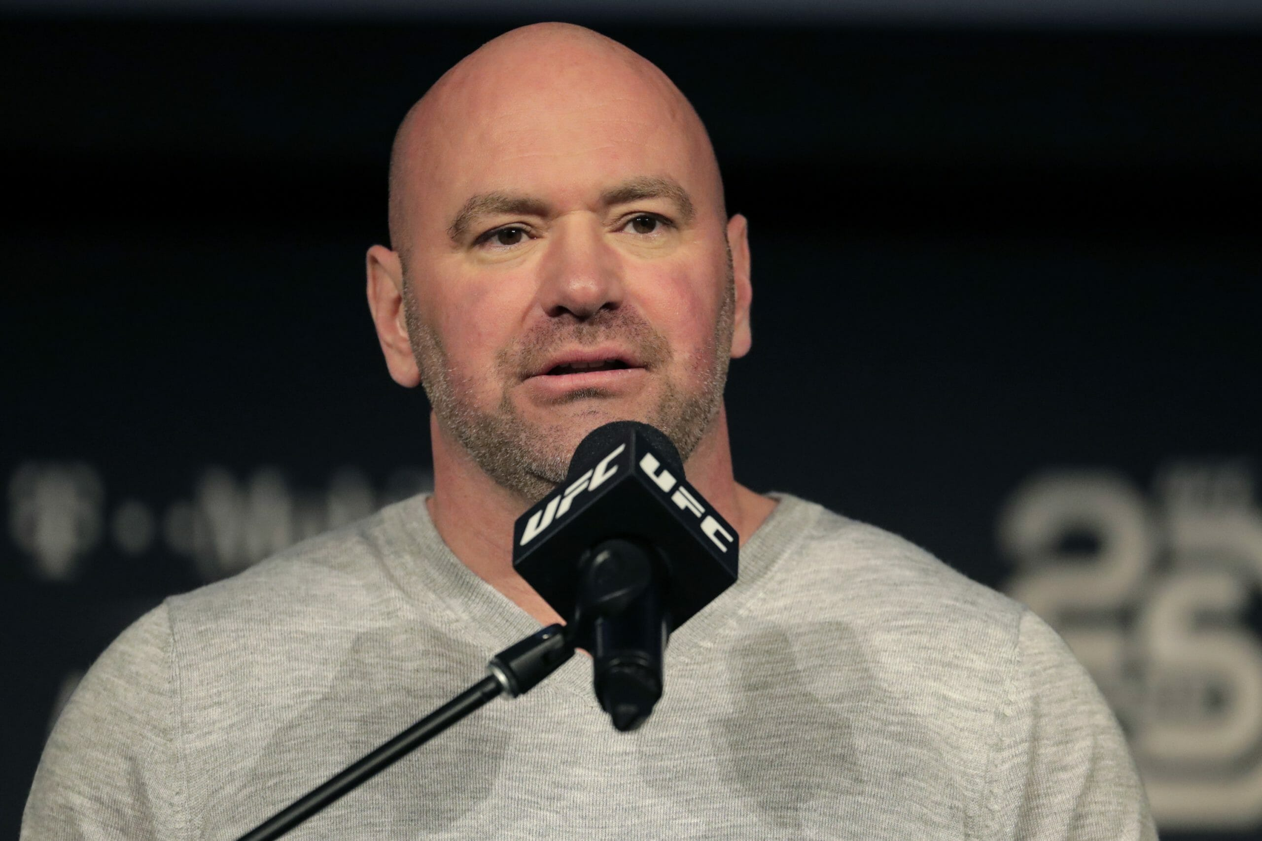 In this Nov. 2, 2018, file photo, UFC President Dana White speaks at a news conference in New York.