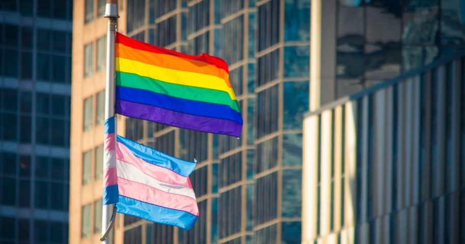 The pride and trans flags wave in the above stock image.