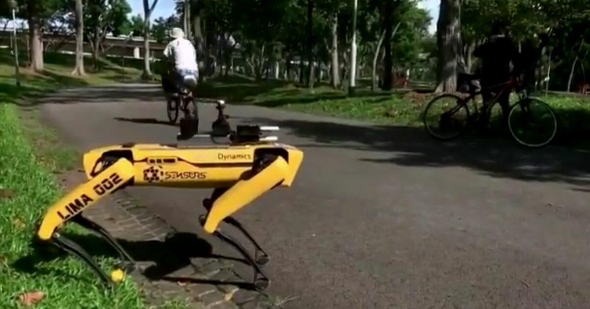 "A robot named ""SPOT"" enforces social distancing at a Singaporean park."