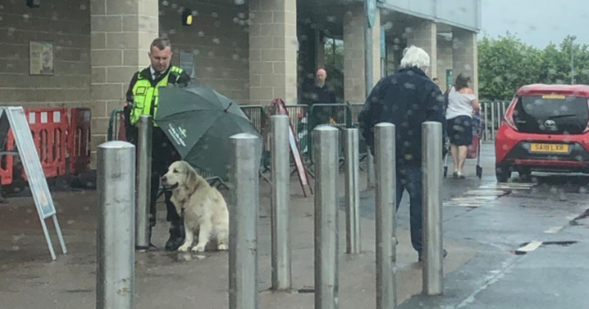 Security guard Ethan Dearman holds up an umbrella for a dog waiting outside the grocery store.