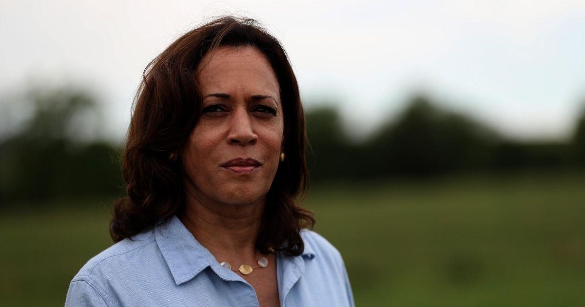 Democratic Sen. Kamala Harris of California looks on while touring the Coyote Run Farm on Aug. 11, 2019, in Lacona, Iowa.