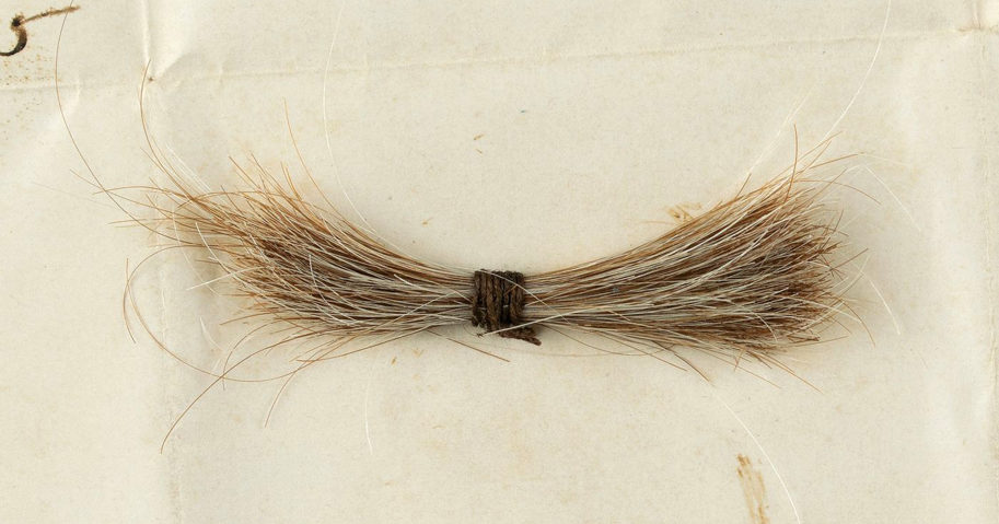 This July 2020 photo released by RR Auction shows a lock of President Abraham Lincoln's hair to be auctioned on Sept. 12, 2020, by the Boston-based auction firm. The lock of hair was removed during Lincoln's postmortem examination in April 1865 after he was fatally shot by John Wilkes Booth at Ford's Theatre in Washington, D.C.