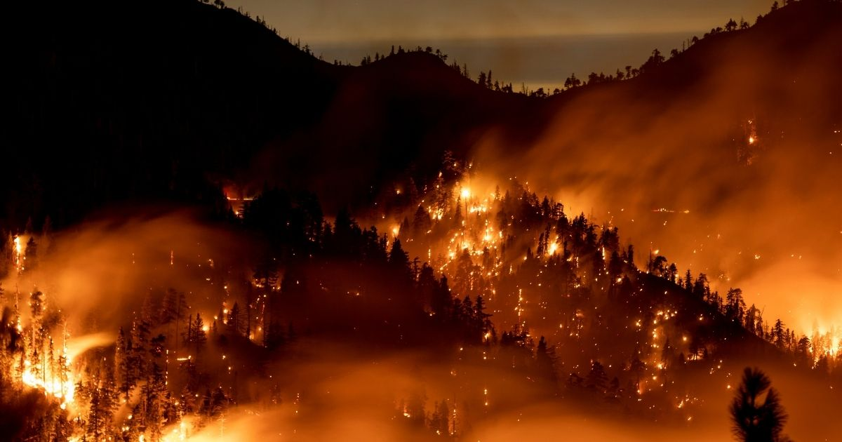 A forest along the Angeles Crest Highway burns as the Bobcat Fire surpasses 100,000 acres on the evening of Sept. 20, 2020, near Wrightwood, California.