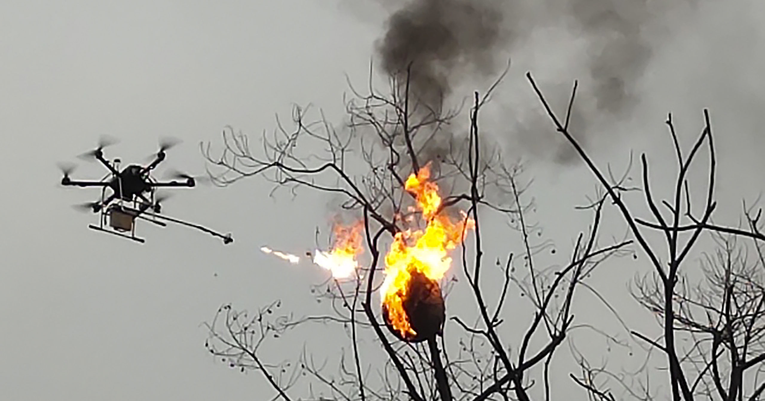 In this Dec. 10, 2020, photo released by Blue Sky Rescue of Zhong County, a drone equipped with a flamethrower burns a wasp nest at a village in Zhong county near Chongqing municipality in southwestern China.