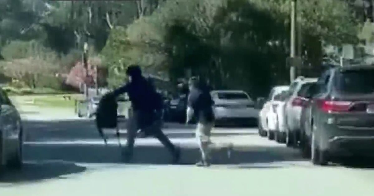 A suspect runs away from a victim with the victim's backpack