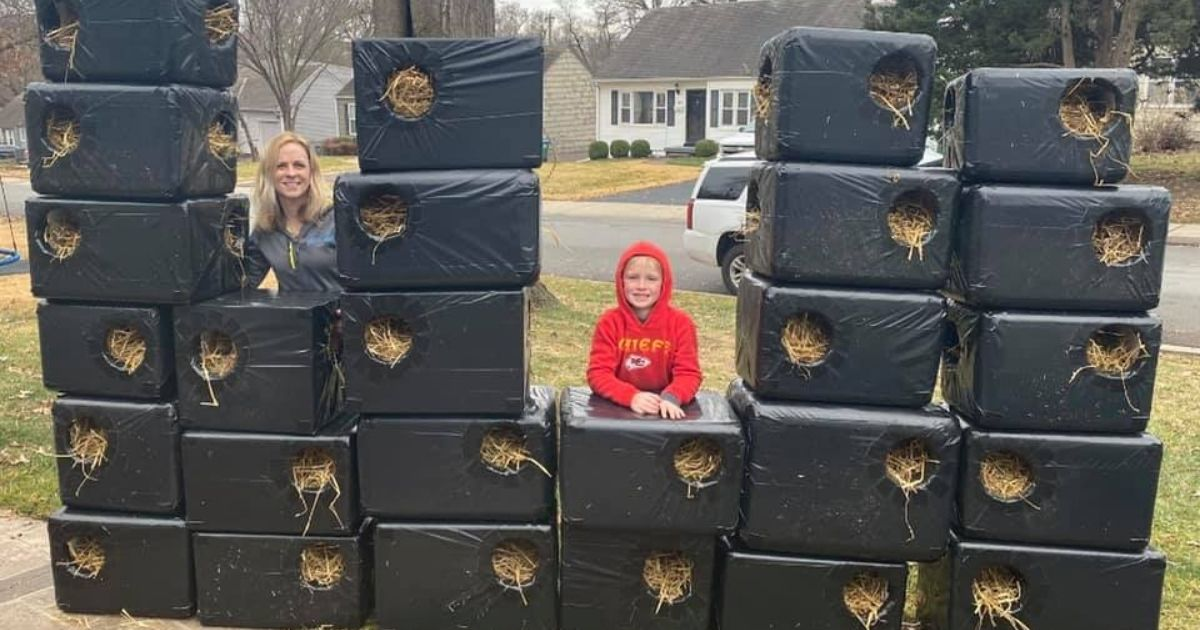 Mom and son pose with cat shelters