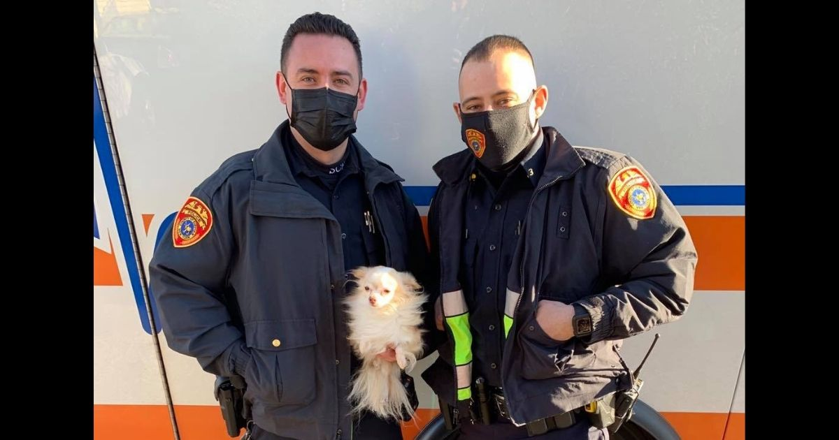 Cops and pup