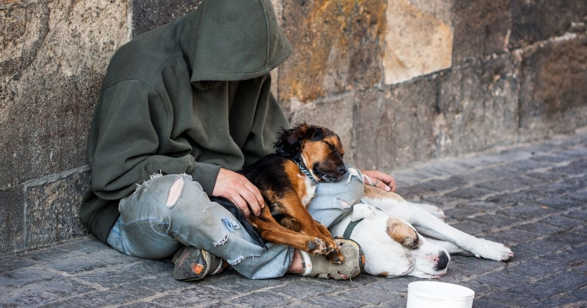 A homeless man with two dogs is pictured above.