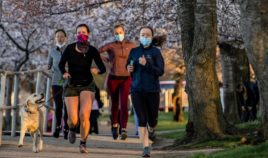 People wearing masks run among the Japanese Cherry Blossom trees along the Tidal Basin in Washington on March 27.
