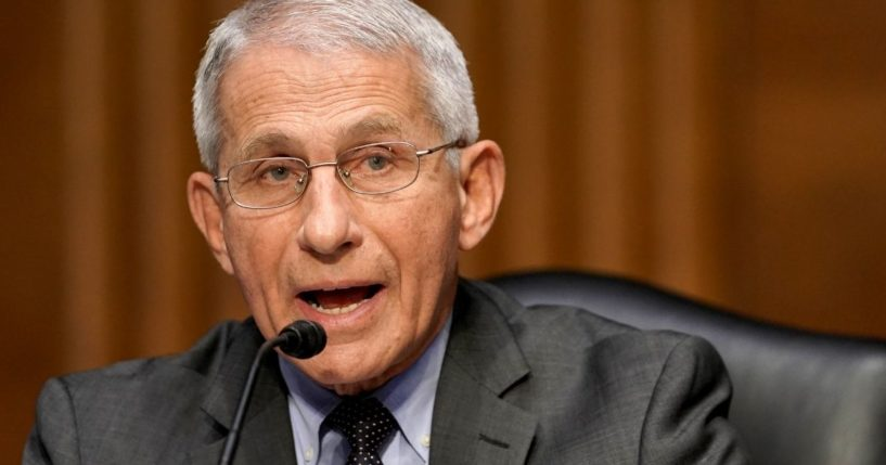 Dr. Anthony Fauci,director of the National Institute of Allergy and Infectious Diseases, appears before a Senate Committee hearing on May 11.