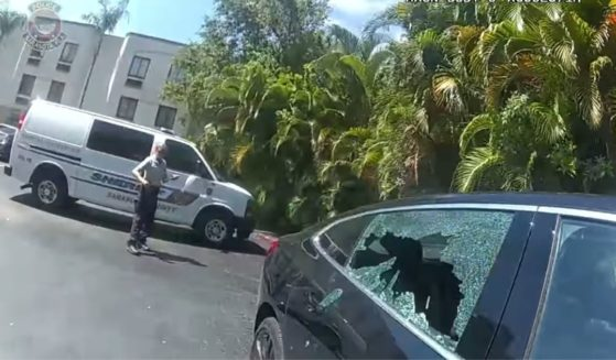 Officers break the window of a parked car in Florida to get some air to a dog that was locked inside.