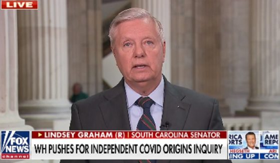 Sen. Lindsey Graham appears on Fox News on Wednesday.