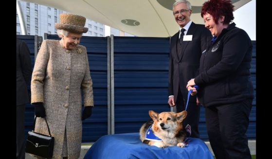 Queen Elizabeth II smiles at a corgi during the opening of a new kennel at Battersea Dogs and Cats Home in London in 2015.