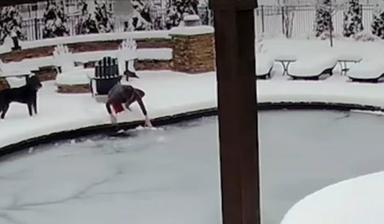 Jennie Tatum searches for her dog, Sid, who fell into the backyard pool and under the ice in February 2021.
