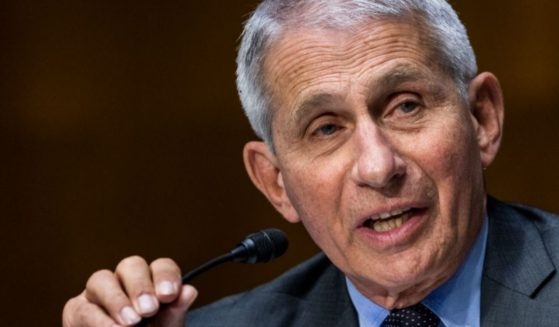 Dr. Anthony Fauci, director of the National Institute of Allergy and Infectious Diseases, testifies before a Senate Health, Education, Labor, and Pensions hearing on May 11, 2021, in Washington, D.C.