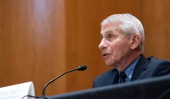 Dr. Anthony Fauci, director of the National Institute of Allergy and Infectious Diseases, speaks during a Senate Appropriations Labor, Health and Human Services Subcommittee hearing on Capitol Hill on May 26, 2021, in Washington, D.C.
