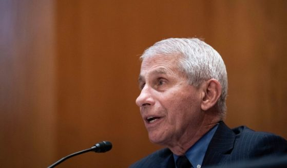 Dr. Anthony Fauci, director of the National Institute of Allergy and Infectious Diseases, speaks during a Senate Appropriations Labor, Health and Human Services Subcommittee hearing looking into the budget estimates for National Institute of Health and state of medical research on Capitol Hill, May 26 in Washington, D.C.