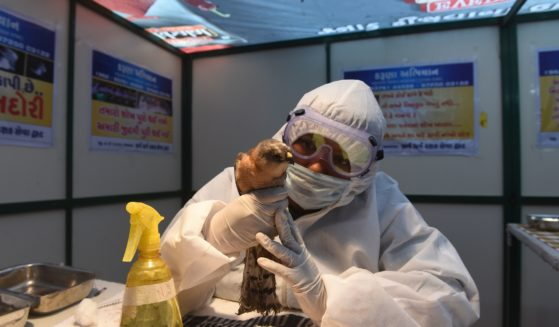 A volunteer wearing personal protective equipment as a precaution against the spread of bird flu observes an injured rescued bird at a temporary shelter in Ahmedabad, India, on Jan. 13.