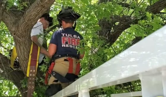 A firefighter rescues a pet owner and his cat in Tulsa, Oklahoma, after the owner got stuck in a tree trying to save the cat.
