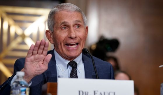 Top infectious disease expert Dr. Anthony Fauci testifies before the Senate Health, Education, Labor, and Pensions Committee on Tuesday on Capitol Hill in Washington, D.C.