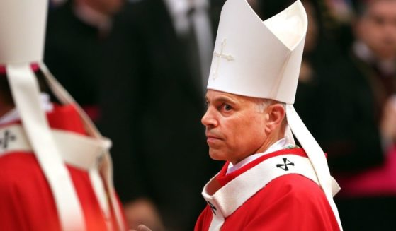 Archbishop of San Francisco Salvatore Joseph Cordileone attends the mass and imposition of the Pallium upon the new metropolitan archbishops held by Pope Francis for the Solemnity of Saint Peter and Paul at Vatican Basilica on June 29, 2013 in Vatican City, Vatican.