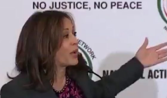 Vice President Kamala Harris once raised concerns about the use of voting machines in elections.