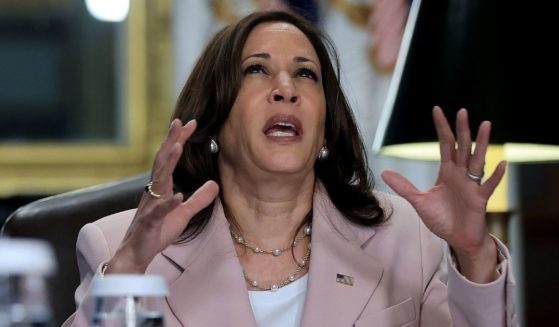 Kamala Harris was described as being 'unpredictable,' and 'demeaning,' according to former staffers.
