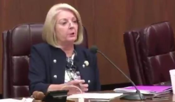 Arizona Republican Senate President Karen Fann said that the state senate does not have the power to recall the 11 Biden electors.