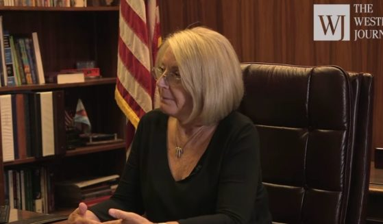 Arizona Senate President Karen Fann conducts an exclusive interview with The Western Journal concerning the state's audit of the 2020 general election.