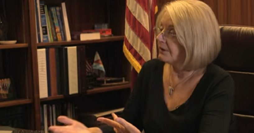 Arizona state Senate President Karen Fann in a July 22 interview with The Western Journal.