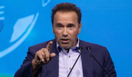 """Former California Gov. Arnold Schwarzenegger speaks on stage during the fifth """"Austrian World Summit 2021"""" on current climate issues at the Spanish Riding School in Vienna on July 1, 2021."""