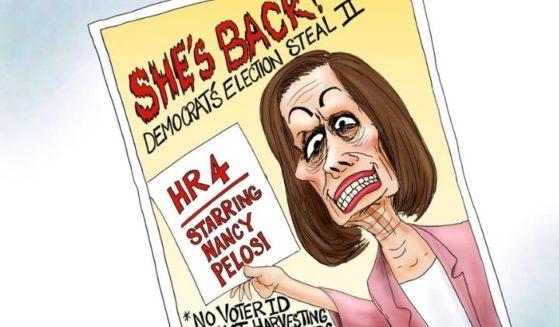 Nancy Pelosi swamp