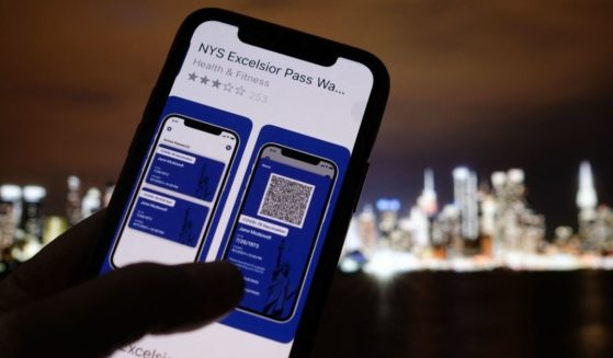 This illustration photo taken in Los Angeles on April 6, 2021, shows a person looking at the app for the New York State Excelsior Pass, which provides digital proof of a COVID-19 vaccination.