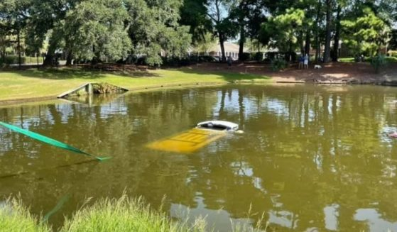 A car that went into a pond in Pawleys Island, South Carolina, trapping the man and dog inside until a trooper came to rescue them.