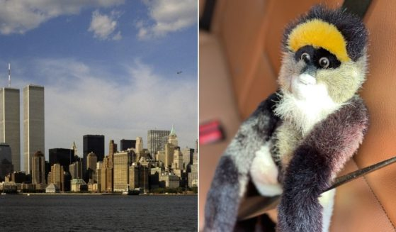 Left, the Manhattan skyline with the World Trade Center is seen on June 12, 1998 in New York, New York. Right, a monkey stuffed animal is buckled in a car.