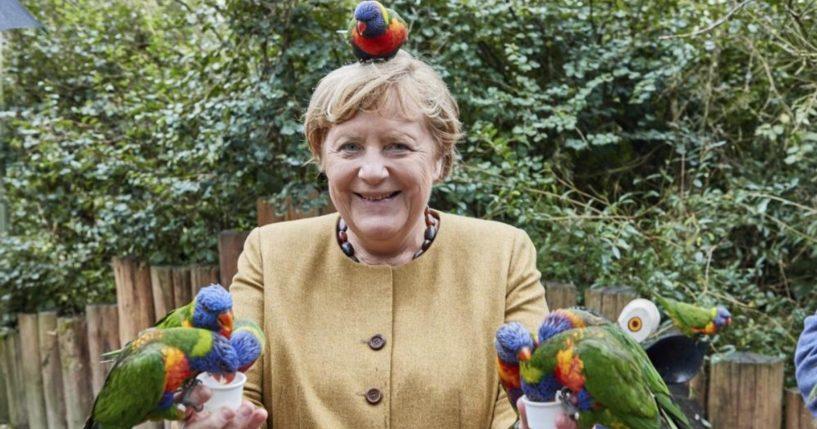 German Chancellor Angela Merkel is seen holding Australian lorikeets at Marlow Bird Park in Marlow, Germany, on Thursday.