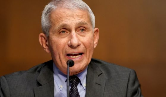 Dr. Anthony Fauci, pictured in a May file photo testifying berfore a Senate committee.