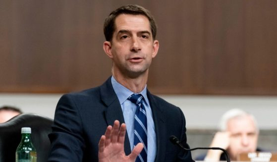 Arkansas Republican Sen. Tom Cotton speaks during a hearing on Capitol Hill on March 25, in Washington, D.C.