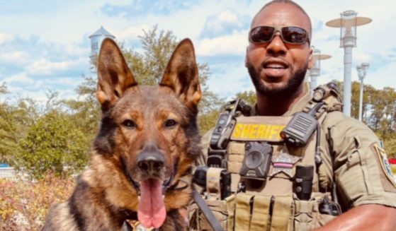K9 Deputy First Class Dawson and K9 partner, Baro, helped save a young 3-year-old boy from a house fire.