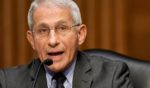 National Institute of Allergy and Infectious Diseases Director Dr. Anthony Fauci, pictured testifying at a May Senate committee hearing.