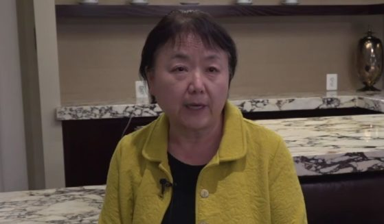 Xi Van Fleet, a Chinese immigrant who fled Mao Zedong's Cultural Revolution, speaks with Fox News about the treatment of concerned parents at school board meetings.